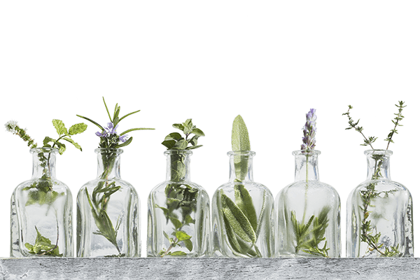 basis workshop aromatherapie